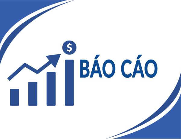 Báo cáo tài chính 6 tháng đầu năm 2020 - Sau kiểm toán