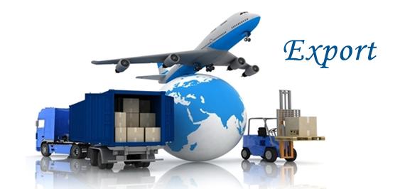 Nâng cấp hệ thống phân phối nội địa, thành lập phòng xuất khẩu